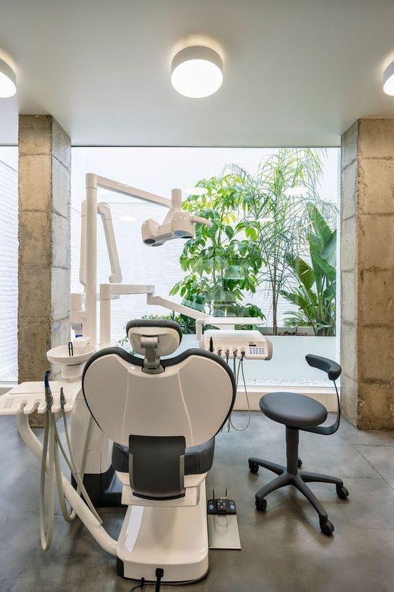 Interiorismo para clínicas dentales: jardín interior